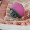 Bluetooth gomba hangszóró
